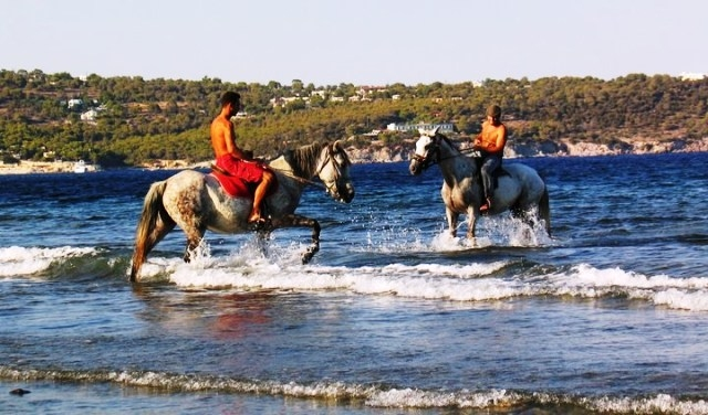Horse Riding in Agia Marina
